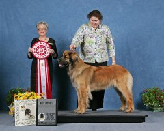 2012-National-AKC-BOS.jpg